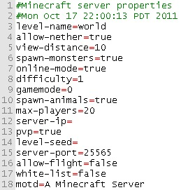 Minecraft server properties